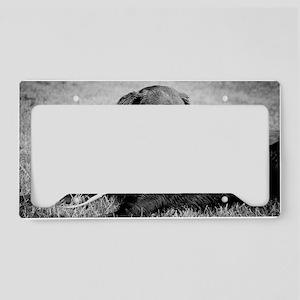 Black Lab 1 License Plate Holder