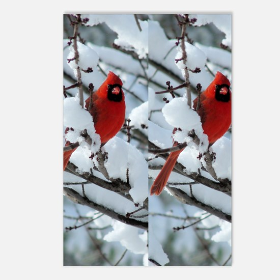 Cardinal Winter Postcards (Package of 8)