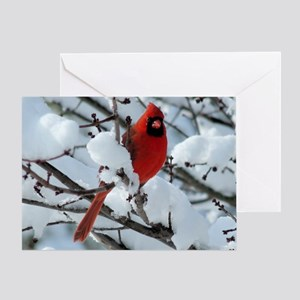 CAWn9.25x7.75SF Greeting Card