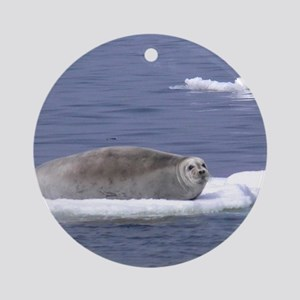 bearded seal on ice Round Ornament