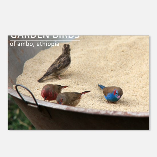 GardenBirds Postcards (Package of 8)