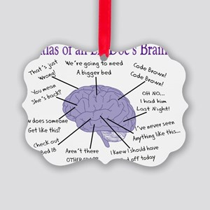 Atlas of an ER Docs Brain Picture Ornament