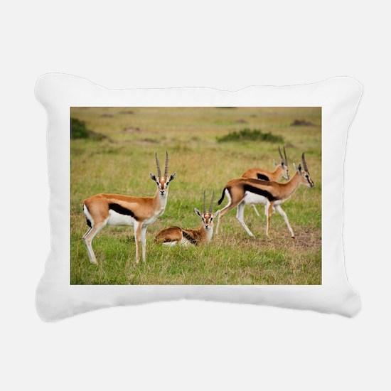 greeting-card Rectangular Canvas Pillow