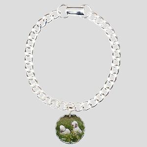 CINClumbersCvr Charm Bracelet, One Charm