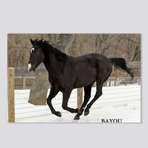 PUZZLE-BAYOU Postcards (Package of 8)