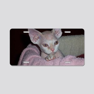 Cutie-Laptop Aluminum License Plate