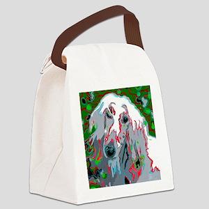 Groovy Afghan Canvas Lunch Bag