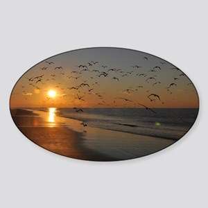 beach-calendar2012-earlybirds Sticker (Oval)