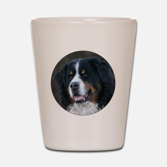 bernese_round Shot Glass