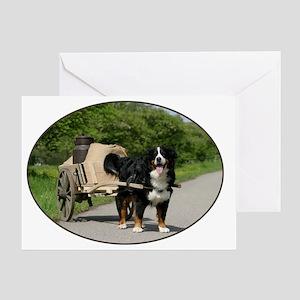 bernese_oval Greeting Card