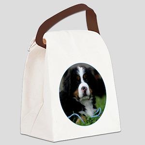 bernese_round1 Canvas Lunch Bag