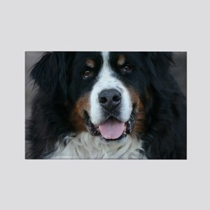 bernese_square2 Rectangle Magnet