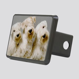 big3 copy Rectangular Hitch Cover