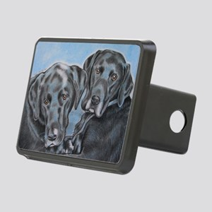 two black labs online stor Rectangular Hitch Cover