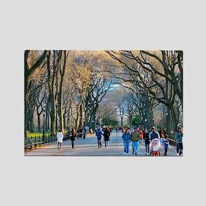 Central Park 3 Rectangle Magnet