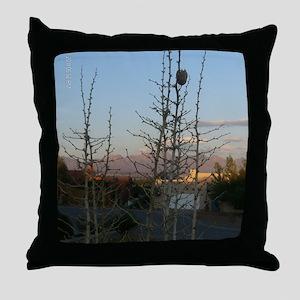Photo 818 Throw Pillow