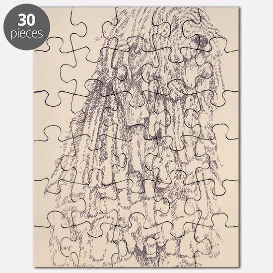Bergamasco_KlineX Puzzle