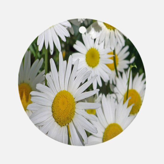 daisies Round Ornament