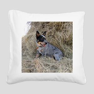 Australian Blue Heeler Pup Square Canvas Pillow