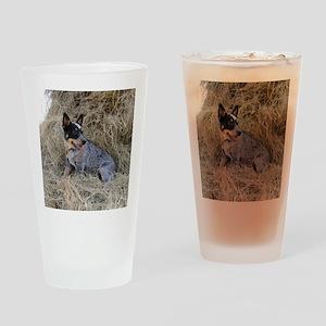 Australian Blue Heeler Pup Drinking Glass