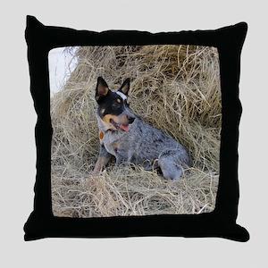 Australian Blue Heeler Pup Throw Pillow