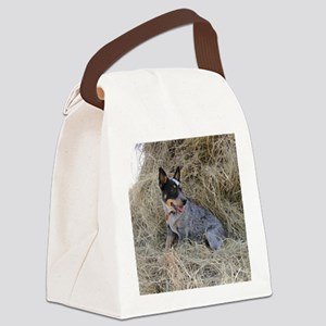 Australian Blue Heeler Pup Canvas Lunch Bag
