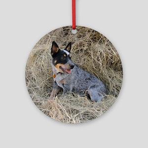 Australian Blue Heeler Pup Round Ornament