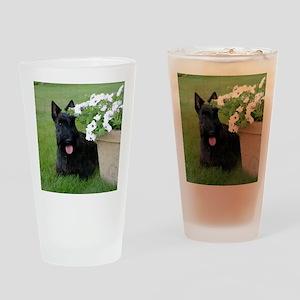 DuganPetunias Drinking Glass