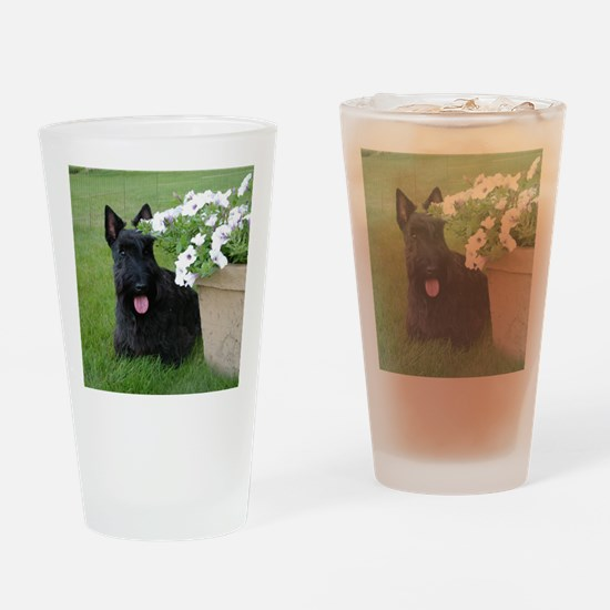 DuganPetunias Drinking Glass