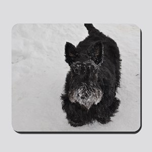 snowpiper Mousepad