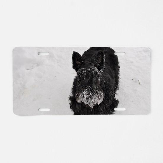 snowpiper Aluminum License Plate