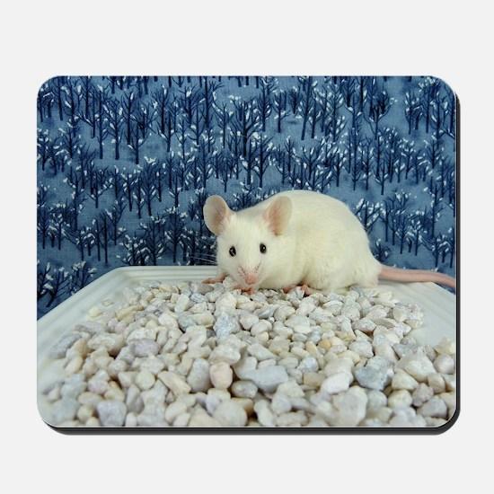 Winter Mouse Mousepad