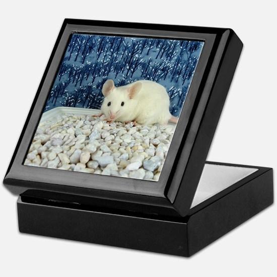Winter Mouse Keepsake Box
