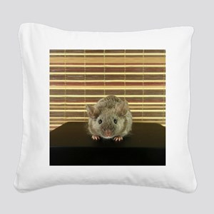 Mousey Square Canvas Pillow