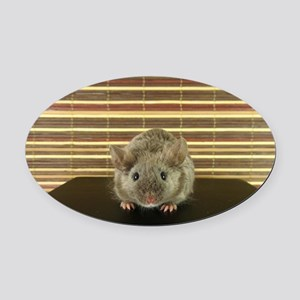 Mousey Oval Car Magnet