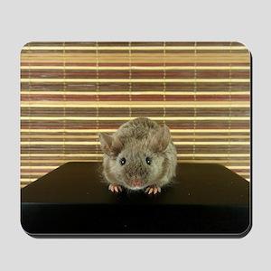 Mousey Mousepad