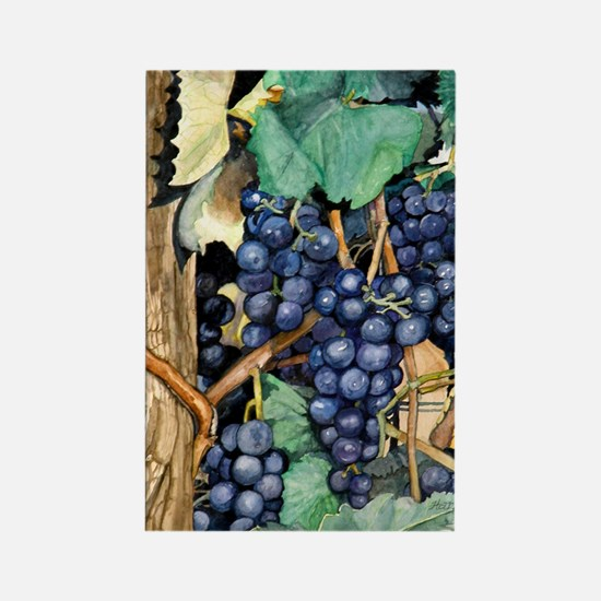 Grapes Rectangle Magnet