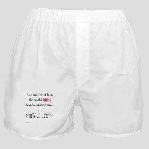 Norwich Terrier World Boxer Shorts