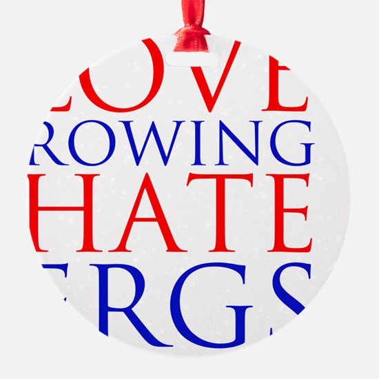 love rowing hate ergs Ornament