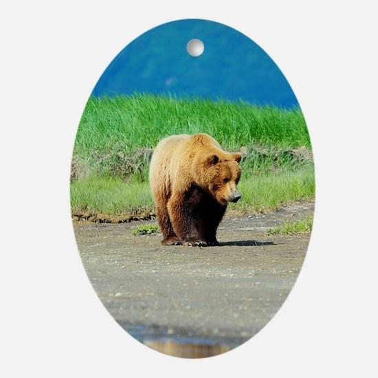 5x8_journal_bear_2 Oval Ornament