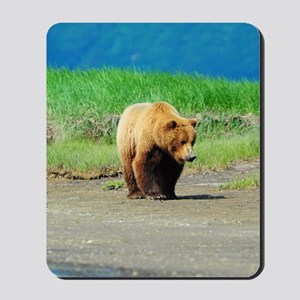 5x8_journal_bear_2 Mousepad