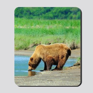 5x8_journal_bear_1 Mousepad