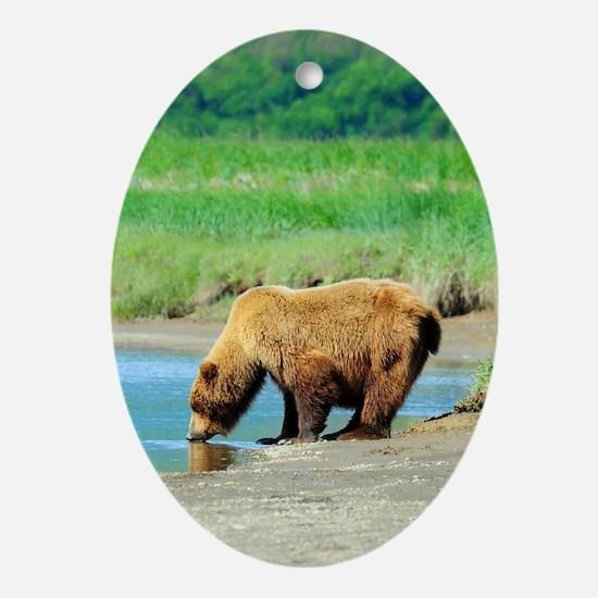 5x8_journal_bear_1 Oval Ornament