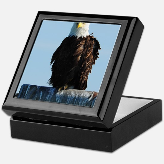 5x8_journal_eagle_1 Keepsake Box