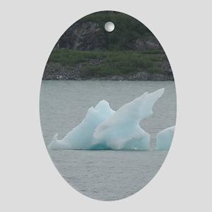 5x8_journal_iceberg Oval Ornament