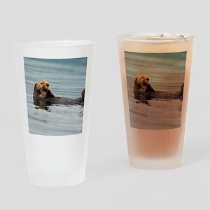 5x8_journal_otter_6 Drinking Glass
