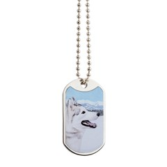 Siberian Husky (Silver and White) Dog Tags