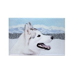 Siberian Husky (Silver and White) Rectangle Magnet