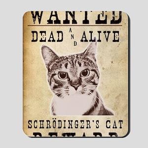 SchrodingerPoster Mousepad