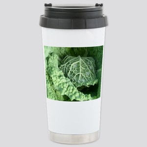 cabbage Stainless Steel Travel Mug